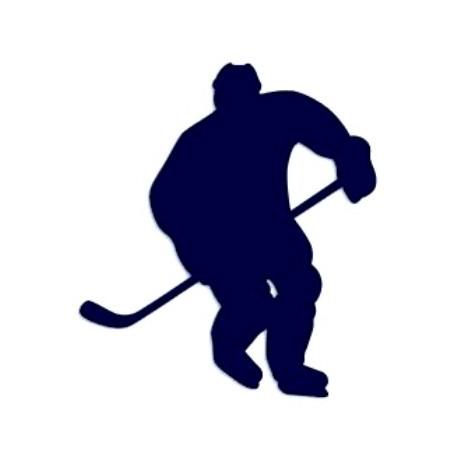 Samolepka na auto-hokej