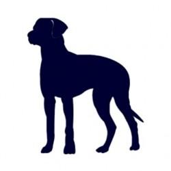 Samolepka na auto-pes v autě - silueta psa