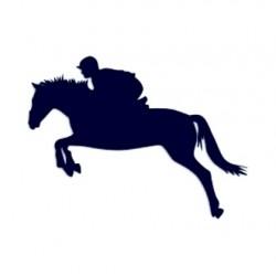 Samolepka na auto-jízda na koni 02
