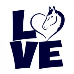 Samolepka na auto se jménem dítěte- sourozenci 02
